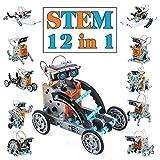 Dreamy Cubby Juguetes Stem para niños de 8 años Kit de Robot Solar 12 en 1 Aprendizaje...